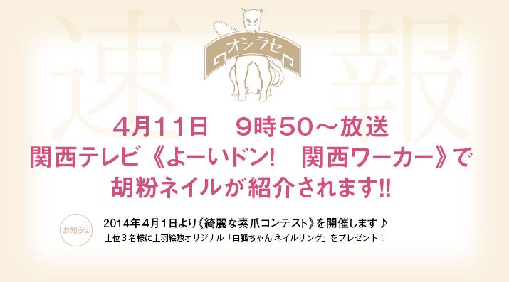 関西テレビ よーいドン!で放映されます!