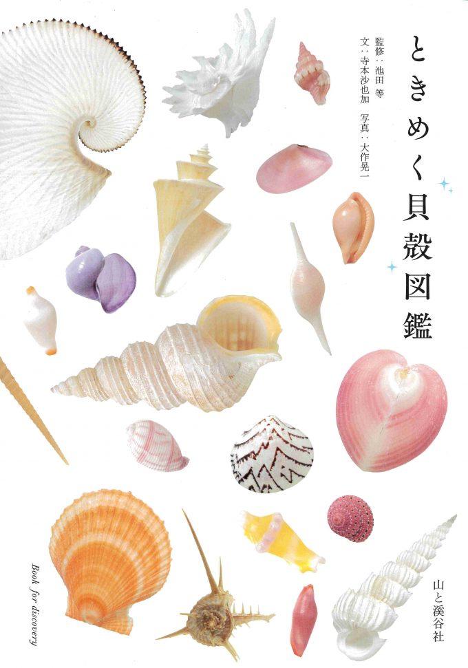 ときめく貝殻図鑑_表紙