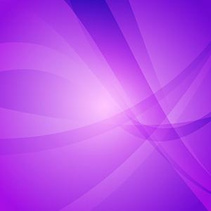 紫苑3_purple0032