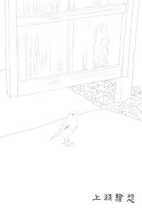 ぬり絵用線画03_イソヒヨドリ