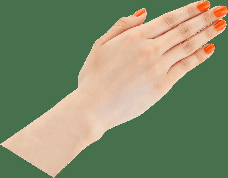 橙(だいだい)手サンプル