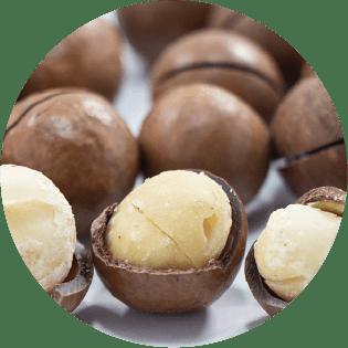 マルラオイル(スクレロカリアビレア種子油)