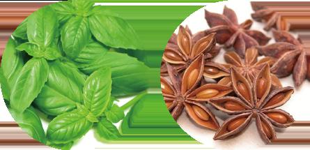 植物(バジル・スターアニス)由来の天然の保存料を使用